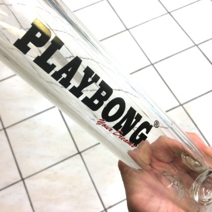 logo playbong your dreams